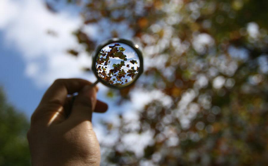 Förstoringsglass (bildkredd: harusday, flickr, cc-nc)