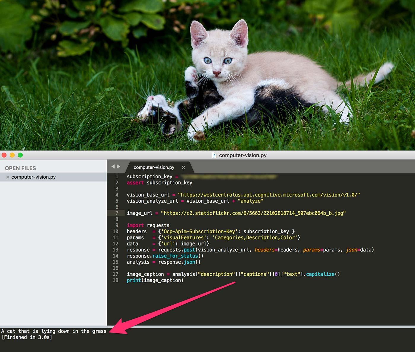 Artificiell Intelligens ser katt liggandes i gräsmatta