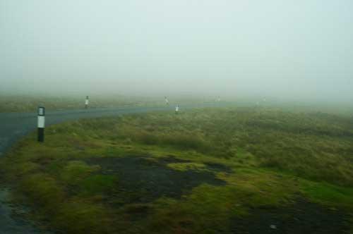 Bild 13: Description: A close up of a lush green field Tags: grass, field, sheep, standing, rainbow, man