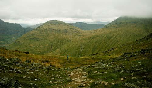 Bild 12: Description: A herd of sheep grazing on a lush green hillside Tags: grazing, sheep, mountain, cattle, horse