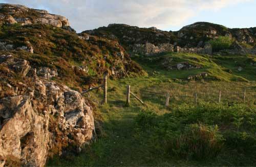Bild 11: Description: A close up of a hillside next to a rocky hill Tags: hillside, grazing, sheep, giraffe, herd
