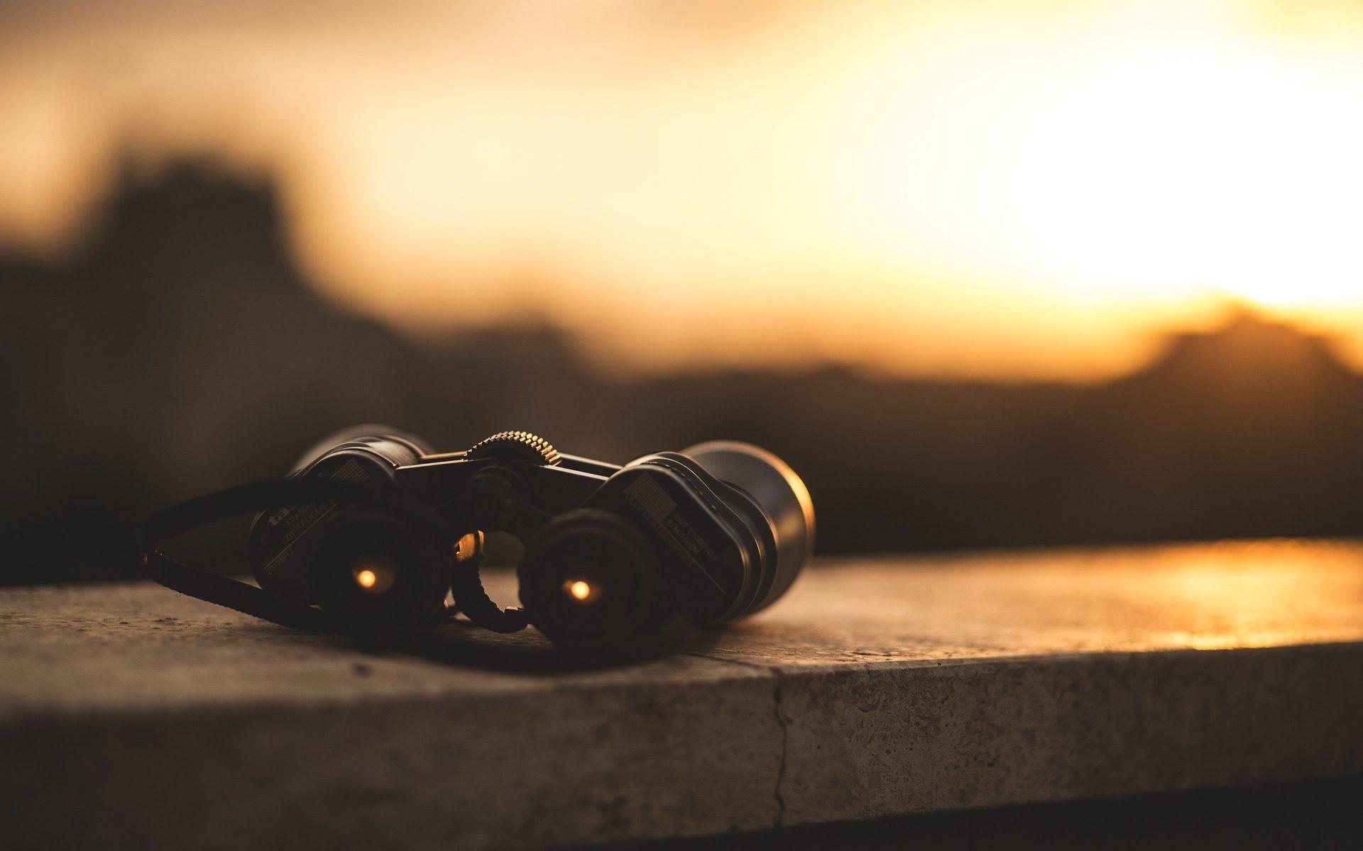 Kikare i solnedgång